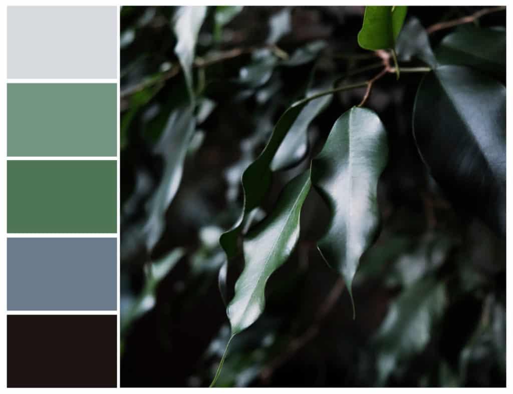 Sydney Property Styling colour consultation